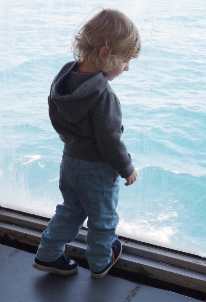 ferry5